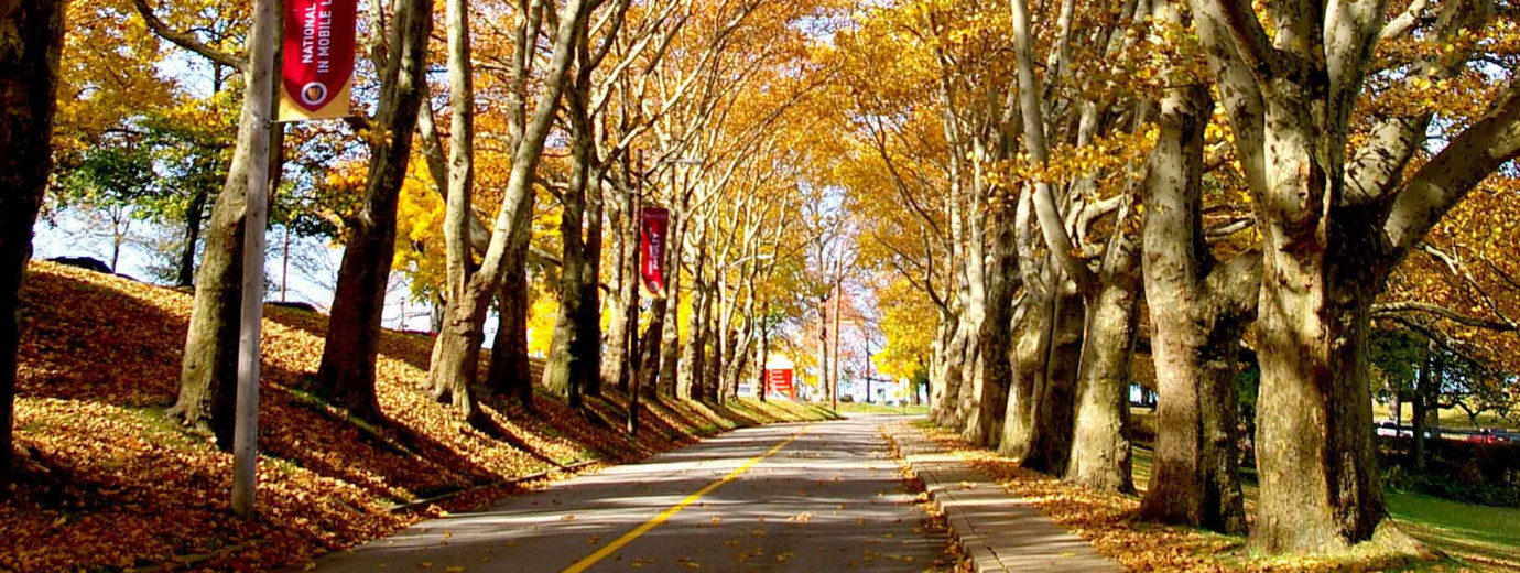 Seton Hill University Named a Best Regional University by U.S. News and World Report